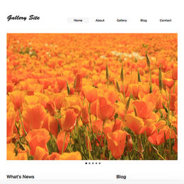 Gallery Site